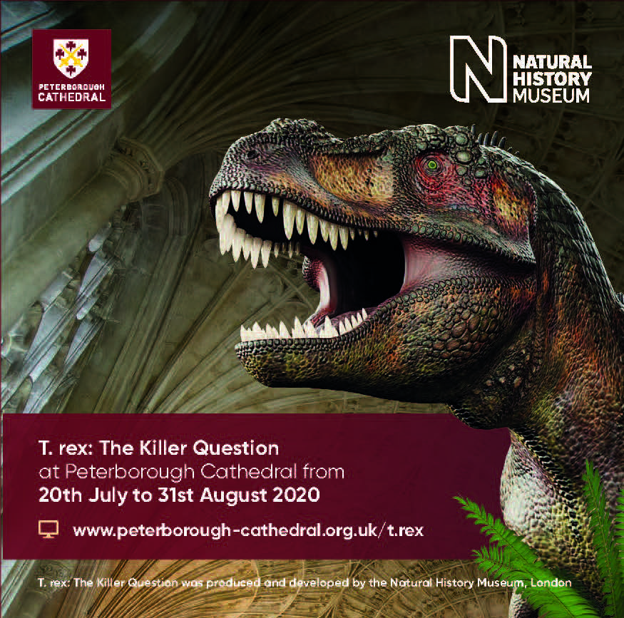 T Rex Exhibition 2020 - Peterborough Cathedral